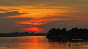 цветы landscape красный заход солнца живой стоковое фото rf
