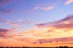цветы landscape красный заход солнца живой Стоковые Фотографии RF