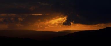 цветы landscape красный заход солнца живой стоковые фото