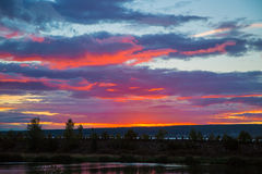 цветы landscape красный заход солнца живой Стоковое Изображение