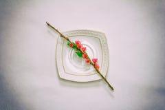 Цветя ветвь персика с розовыми цветками на белом поддоннике на сером конце-вверх предпосылки, взгляд сверху Стоковое Изображение