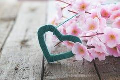 Цветя ветвь с розовыми чувствительными цветками на деревянной поверхности Стоковые Изображения RF
