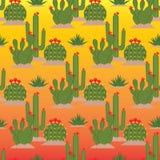 Цветя кактусы картина безшовная Стоковое Изображение RF