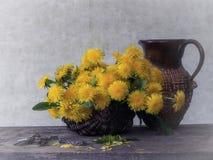 Цветя одуванчики - ключ от весны Стоковые Изображения