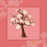 Цветя рамка вишни дерева Стоковое Изображение RF