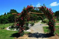 Цветя своды красной розы декоративные в rosarium дендропарка Mlynany, Словакии Стоковые Фотографии RF