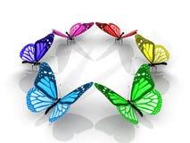 цвет бабочек Стоковое Изображение RF