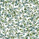 Цвет безшовного foliate орнамента акварели зеленый Иллюстрация вектора
