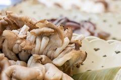 Цвет белизны еды гриба Стоковые Фотографии RF