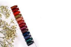 Цвет блеска для глаза кота маникюра Дизайн для ногтей маникюр тестеров Маникюр моды Сияющий лак макания женственно стоковая фотография