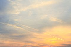 Цвет вечера Стоковое Фото