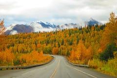 Цвет горной цепи и осени Аляски на шоссе парков стоковое фото rf