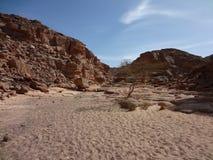 цвет Египет каньона Стоковые Изображения