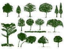 Цвет деревьев зеленый и изолят и пути клиппирования Стоковая Фотография RF