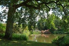Цвет лета на садах парка Шеффилда Стоковая Фотография