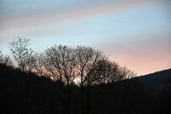 Цвет захода солнца голубой и розовый Стоковые Фото