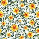Цвет и желтый цвет безшовного foliate орнамента акварели зеленый цветут Иллюстрация штока