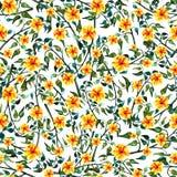 Цвет и желтый цвет безшовного foliate орнамента акварели зеленый цветут Бесплатная Иллюстрация