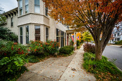 Цвет и дом осени в городском Easton, Мэриленде Стоковое Изображение RF
