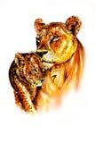 Цвет иллюстрации искусства тигра иллюстрация вектора