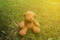 цвет куклы коричневый сидит на траве в саде на солнечном дне с цветом Стоковое Изображение