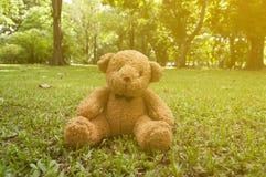 цвет куклы коричневый сидит на траве в саде на солнечном дне с цветом Стоковые Изображения RF