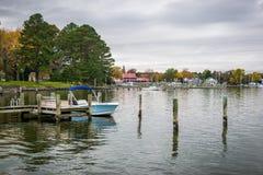 Цвет осени берег и гавань чесапикского залива в St Michaels стоковые изображения rf