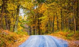 Цвет осени вдоль грязной улицы в Frederick County, Мэриленде Стоковые Фотографии RF