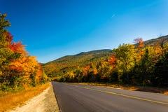 Цвет осени вдоль дороги в белом национальном лесе горы, новом Стоковая Фотография