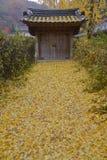 Цвет осени на деревне Namsangol фольклорной, Сеуле, Южной Корее - ноябре 2013 стоковые изображения