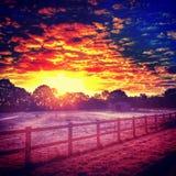 Цвет осени Стоковое Изображение RF