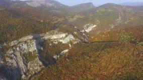 Цвет осени forrest в горах съемка Летание над красивым лесом горы сток-видео
