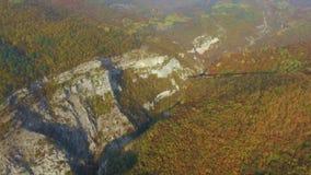 Цвет осени forrest в горах съемка Летание над красивым лесом горы видеоматериал