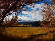 Цвет падения горы и луга стоковое изображение