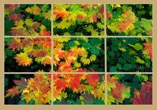 Цвет падения через специализированные части окна Стоковое Изображение RF