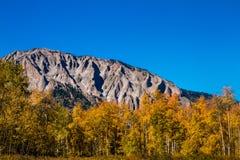 Цвет падения в Crested Butte Колорадо Стоковые Изображения RF