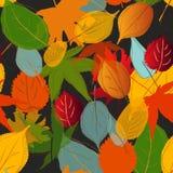 Цвет падения картины лист Бесплатная Иллюстрация