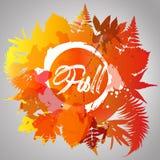 Цвет падения предпосылки осени листьев падения Иллюстрация штока