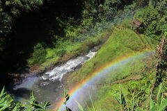Цвет радуги Стоковые Фотографии RF