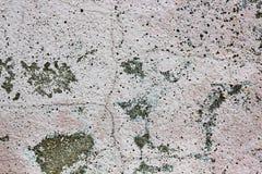Цвет, текстурированный крупный план, стена, грубый, поверхностный, старая, предпосылка, текстура, пол Стоковое фото RF