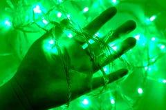 Цвет электрической лампочки зеленый Стоковые Фотографии RF