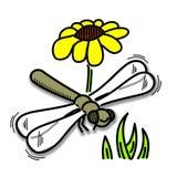 Цвет Dragonfly Стоковые Изображения