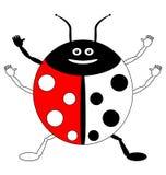 Цвет ladybird примера Стоковое Изображение RF