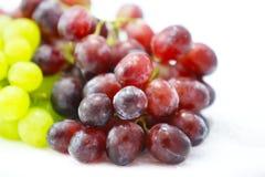 Цвет ood красных виноградин свежий приносить природа предпосылки стоковые фотографии rf