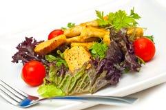 цезарь изолировал салат стоковые изображения rf