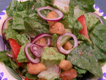 цезарь одевая салат стоковая фотография