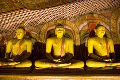 Цейлон, золотые статуи в виске Будды стоковые фото