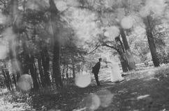 Целовать невесты и groom, полагаясь до одно другое стоковые фотографии rf