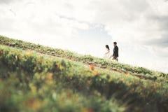 Целовать пар свадьбы оставаясь над красивым ландшафтом Стоковое Изображение RF