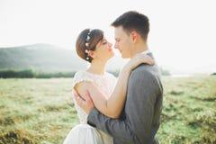 Целовать пар свадьбы оставаясь над красивым ландшафтом Стоковые Фото